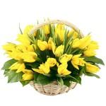 """Корзина из 51 тюльпана """" Хорошее настроение """""""